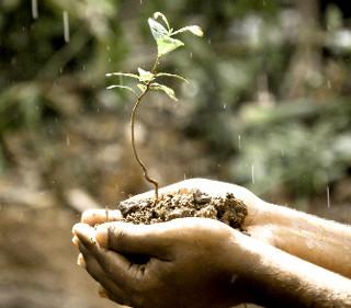 nachhaltiger_anbau